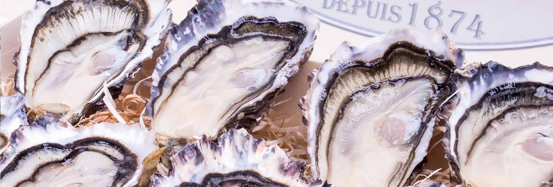 Huîtres Geay